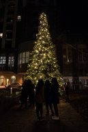 Holiday Magic Yorkville (8)