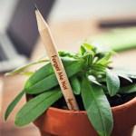 Sprout: el lápiz que renace en una planta