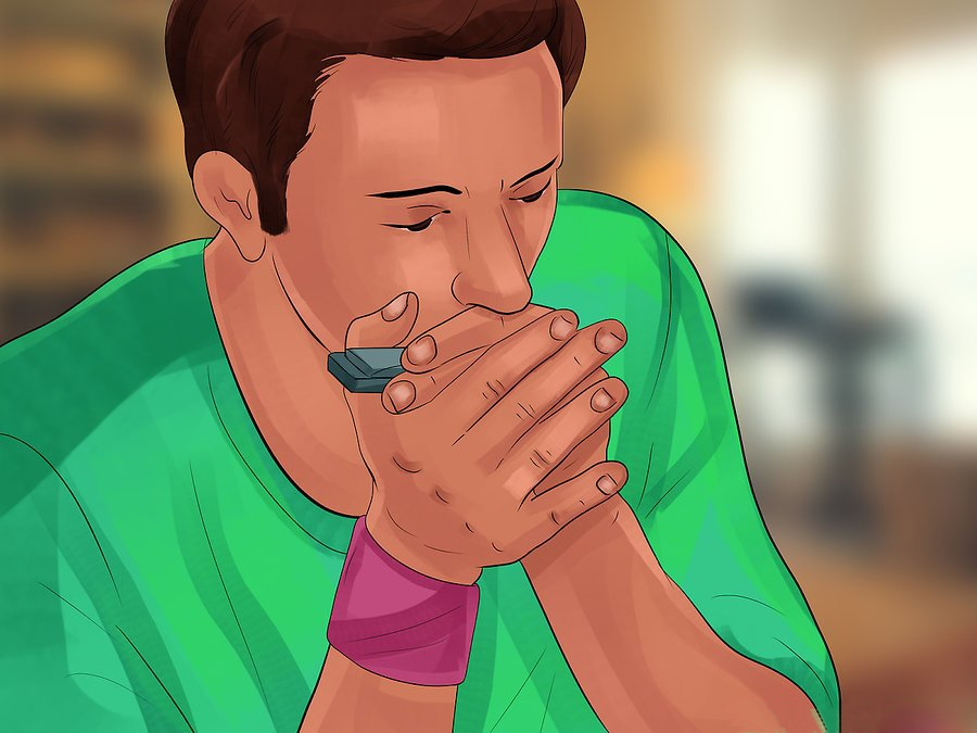 How to hold Harmonica - Holding Your Harmonica step 8