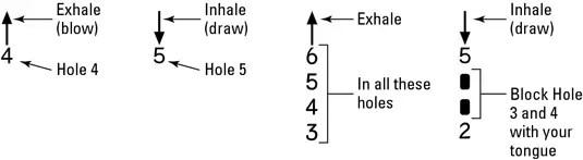 how to read harmonica tab