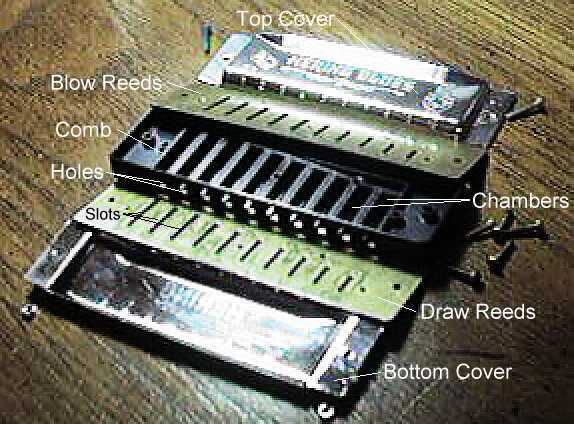 The Diatonic Harp Reference: How a Harmonica Works 3