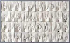 Le mur de vulve par Jamie McCartney