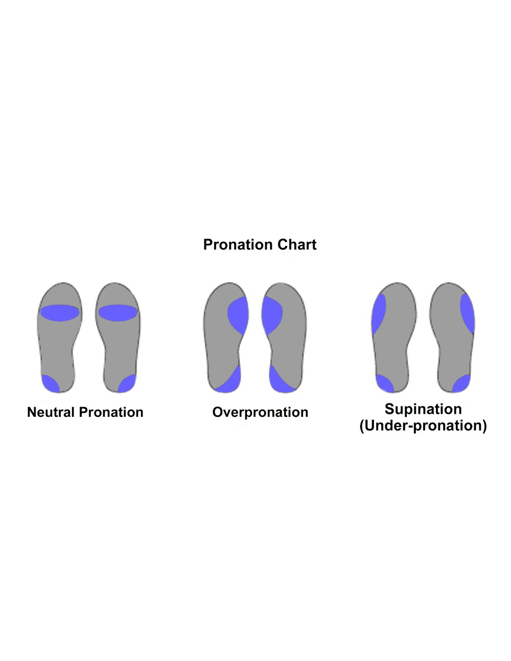 medium resolution of personally i have a very low arch which causes me to purchase running shoes that have more cushion and stability and less of a curve along the inside of