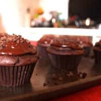 Sachertorte Cupcakes