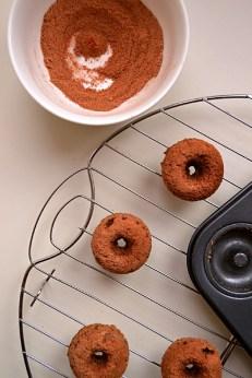 Buckwheat Cinnamon Coffee Cake Donuts (DSC_0411)
