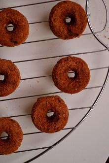 Buckwheat Cinnamon Coffee Cake Donuts (DSC_0443)