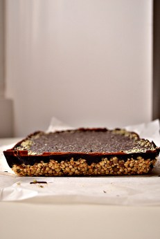 Cereal Bars w: Hemp, Flax, Chocolate (DSC_0518)
