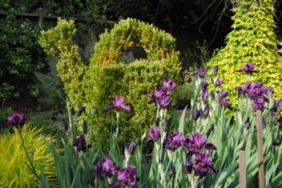 Freeland Tanner-Garden Designer-Napa-Garden Decor-Bespoke Garden Decor-topiary