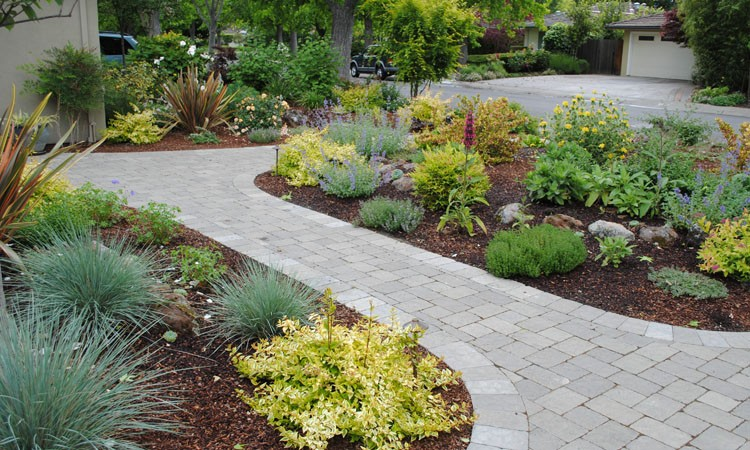 Low Water High Color Garden | Harmony in the Garden on Backyard Ideas Without Grass  id=71229