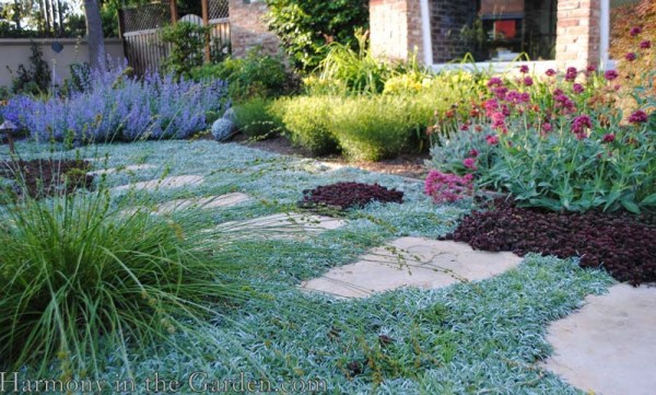 shades of gray in -lawn front