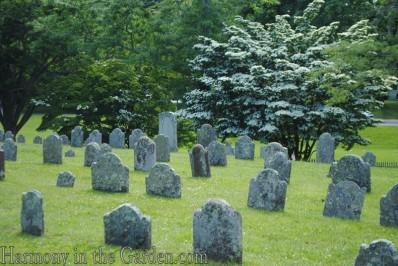 Gravestones05
