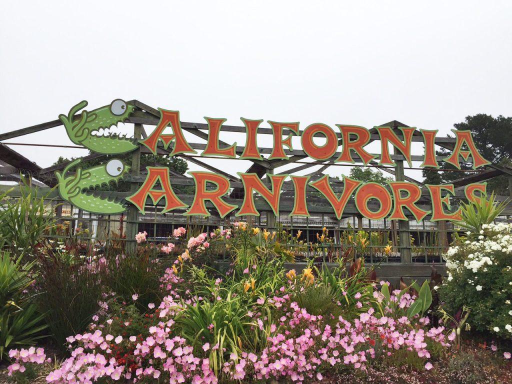 California Carnivores | Harmony in the Garden