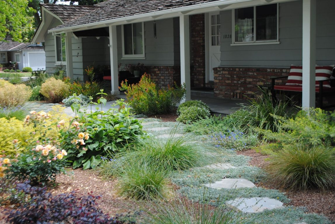 Lawn Free and Low Maintenance09