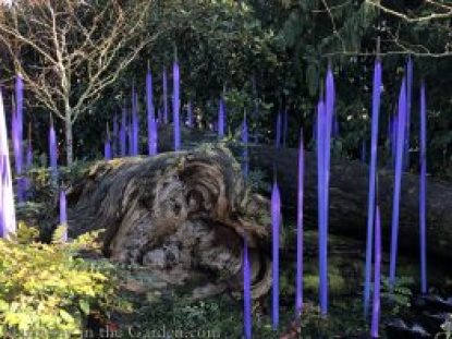 chihuly glass-chihuly museum-seattle-garden glass art
