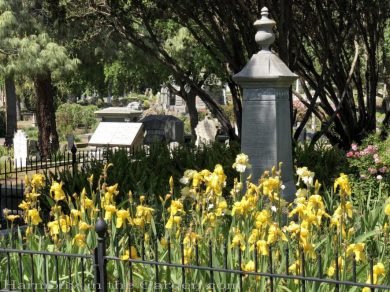 sacramento historic rose garden-california native garden-northern california-pioneer cemetery-iris