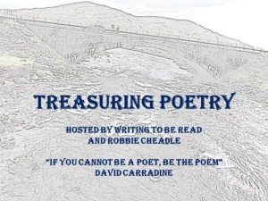 Treasuring Poetry banner in. Luke and grey