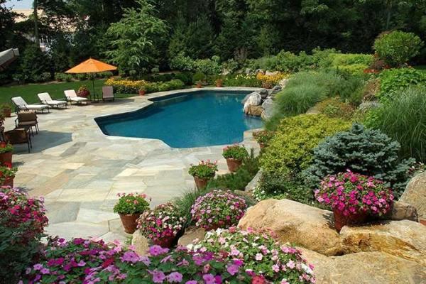 harmony pool & spa audubon