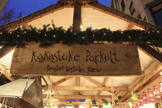 Ruminations on the Hungarian Language: Take Two