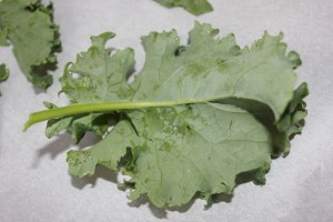 Then I tore off the leaves of the kale leaving the rib of the leaf for the compost pile.