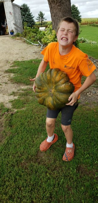 These pumpkins are heavy...Building stronger boys.