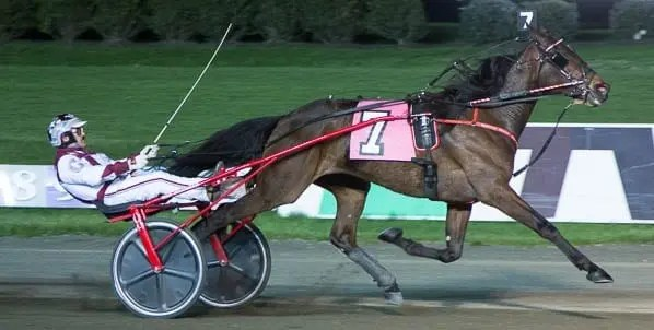 A 1:52.2 victory on Friday in the open trot handicap at the Meadowlands gave JL Cruze (John Campbell) his third win of the year | Michael Lisa