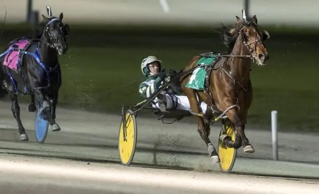 Despite a chilly night with front-runners fading, Yannick Gingras went gate-to-wire with Rockin Ron to win the Confederation Cup | Dave Landry