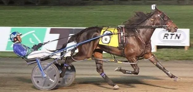 Blue Moon Stride (Andrew McCarthy) winning her $25,000 NJSS event May 28 at the Meadowlands | Mike Lizzi