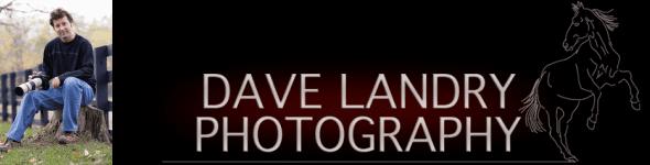 Dave Landry