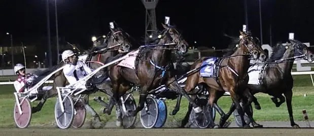 Yannick Gingras drove Lady Shadow to victory. | Michael Lisa