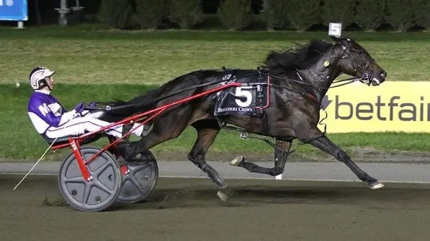 David Miller drove Broadway Donna to victory for Fashion Farms and trainer Jim Campbell. | Michael Lisa