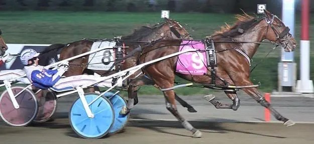 Call Me Queen Be pulled off the 12-1 upset to give driver Scott Zeron his first Breeders Crown. | Michael Lisa