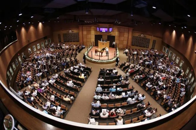 It was a busy, profitable night at Fasig-Tipton with 29 yearlings selling for $100,000 or more.   Dave Landry