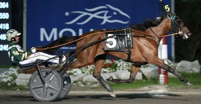 Ariana G (Yannick Gingras) should be a locked to be named the top two-year-old filly trotter of 2016.   New Image Media