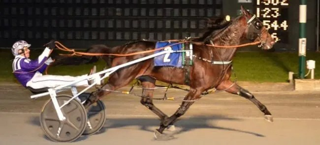 Pure Country (Brett Miller) was one of four sophomore Matron winners Thursday at Dover Downs. | FotoWon