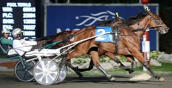 Bee A Magician and Brian Sears beating the boys in the 2015 Maple Leaf Trot at Mohawk. | New Image Media