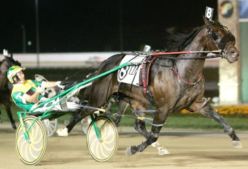 Our Lucky Chip (Trace Tetrick) is back on the track after being retired to stud | Linscott Photography