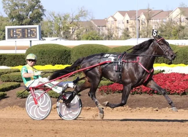 Walner and Tim Tetrick (shown winning at Red Mile last October) are heading into 2017 as the Hambletonian favorites   Mark Hall / USTA