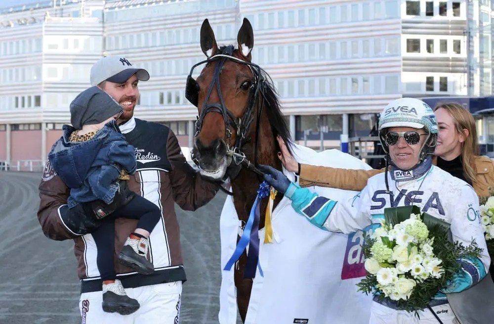 Delicious has been one of the most popular horses both in Team Reden's barn in Sweden and with European trotting fans. The Cantab Hall mare was retired from racing this week due to a serious stomach ailment | Jeannie Karlsson/Sulkysport