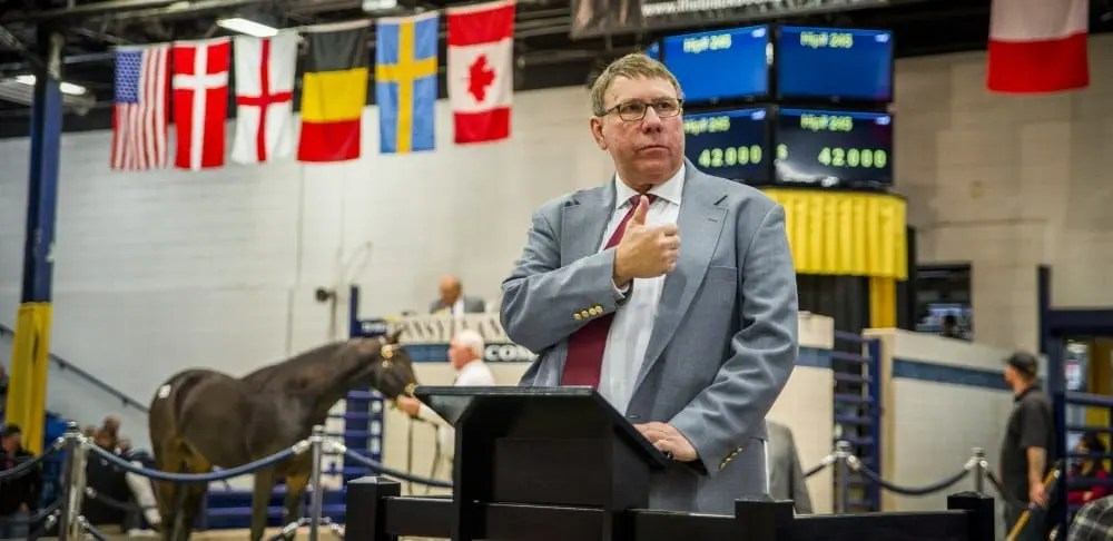 ales officials were delighted the yearling auction was up from last year | Triscari Video Web and Marketing