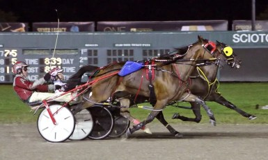 """Brad Conrad   Foiled Again (inside) battled with Lucky Lime to finish in a """"dead heat"""" in an exhibition match race. The grateful Scioto Downs fans appreciated the stop on the Foiled Again Farewell Tour."""