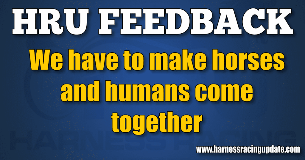 We have to make horses and humans come together