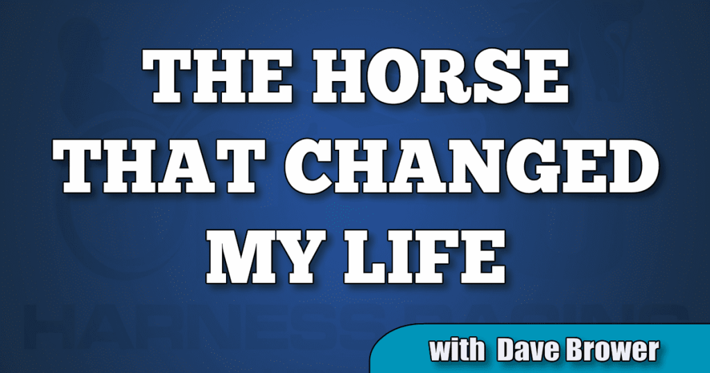 Dave Brower reveals The Horse That Changed His Life