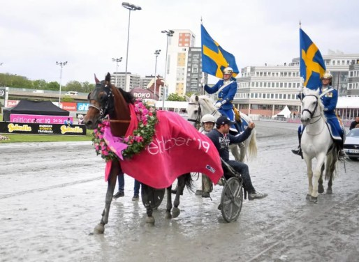 Gerard Forni | Dijon and driver Romain Derieux leaving the winner's circle after posting an upset in the Elitlopp.