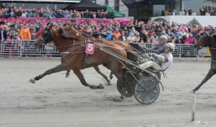 Gerard Forni | DIjon (5, Romain Derieux) held off Aubrion du Gers in the Elitlopp final.
