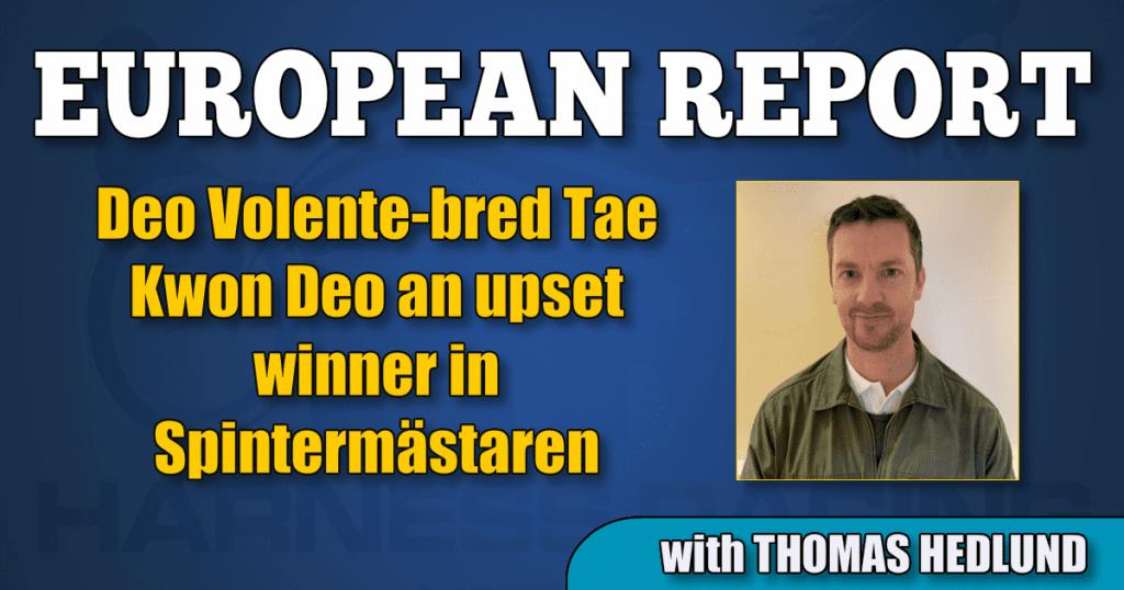 Deo Volente-bred Tae Kwon Deo an upset winner in Spintermästaren