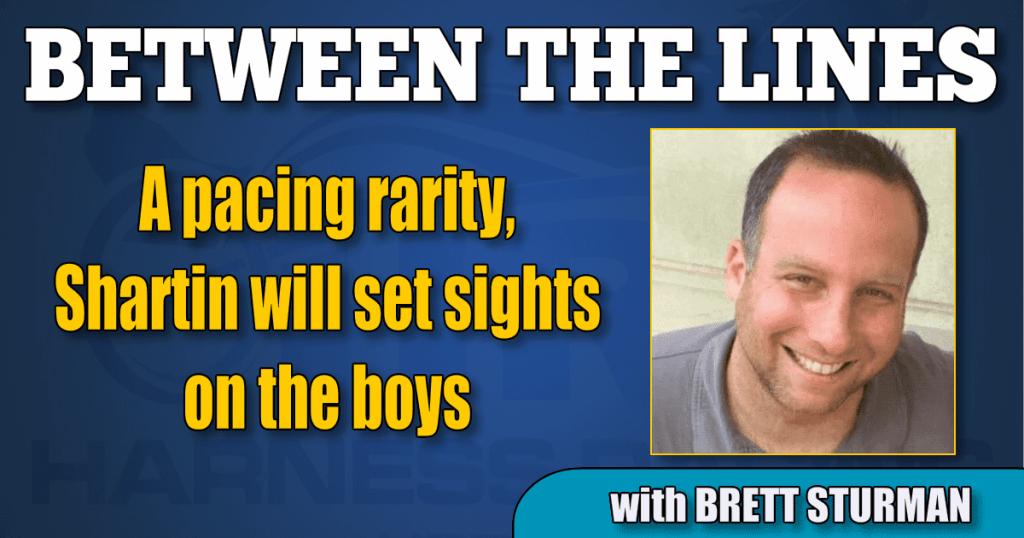A pacing rarity, Shartin will set sights on the boys