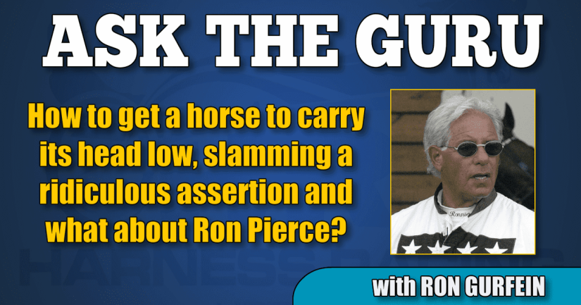 How to get a horse to carry its head low, slamming a ridiculous assertion and what about Ron Pierce?