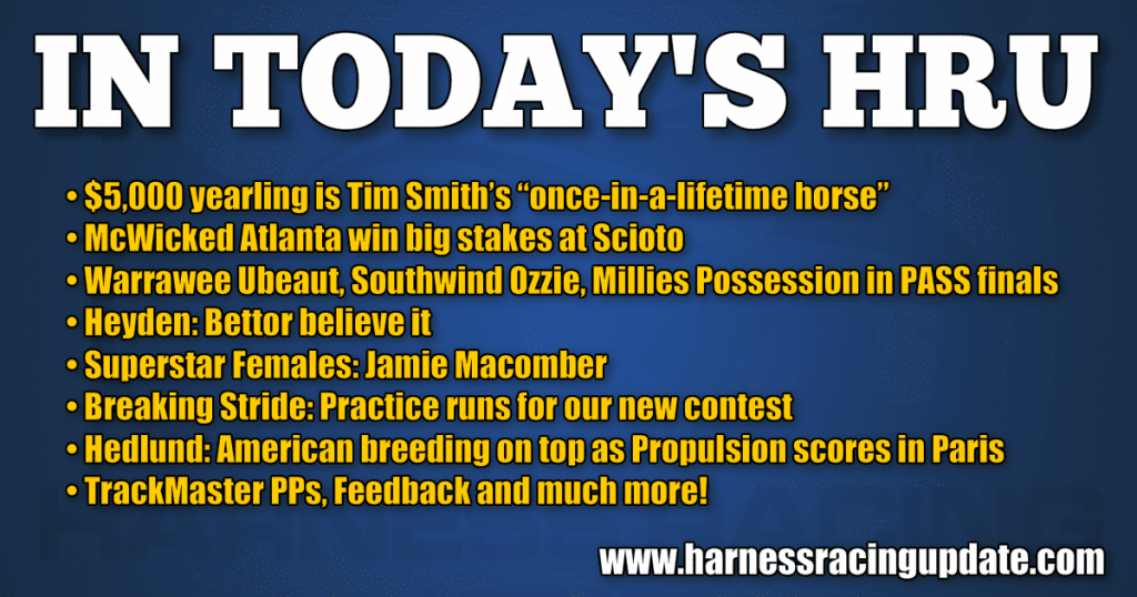 """$5,000 yearling is Tim Smith's """"once-in-a-lifetime horse"""""""