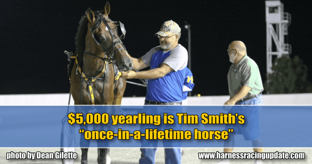 "$5,000 yearling is Tim Smith's ""once-in-a-lifetime horse"""