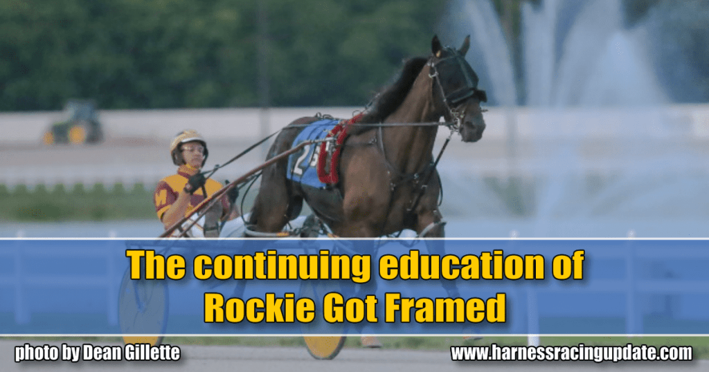 The continuing education of Rockie Got Framed